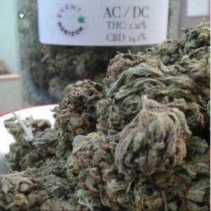 Buy ACDC Medical Marijuana