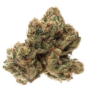 Abusive OG Marijuana Strain