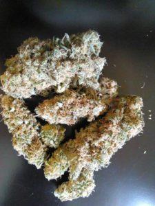 Blueberry Kush Marijuana Strain
