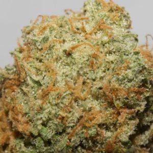 Bubble Gum Weed Strain UK