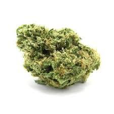 3 Kings Cannabis Strain