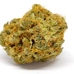Buy GMO Cookies Weed Strain UK