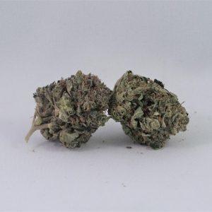 Hindu Kush Marijuana Strain