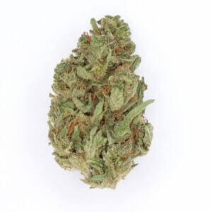 Razzleberry Kush Cannabis Strain