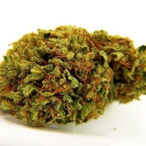 Tangie Biscotti Medical Marijuana UK